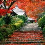 Turismo en Japón