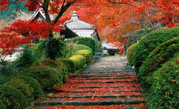 Fotografía de Kyoto