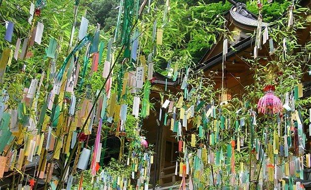 Papeles colgados en árboles de bambú durante el Tanabata