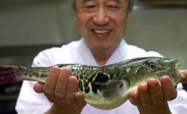 Chef de fugu