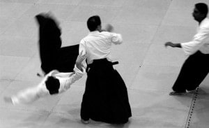 pelea de aikido