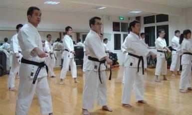 todos los japoneses saben karate