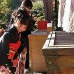 ojigi santuario