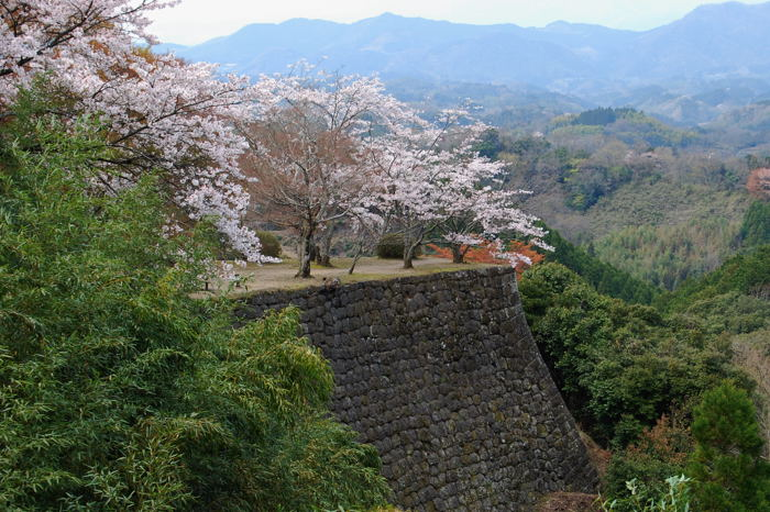 Ruinas del castillo de Oka