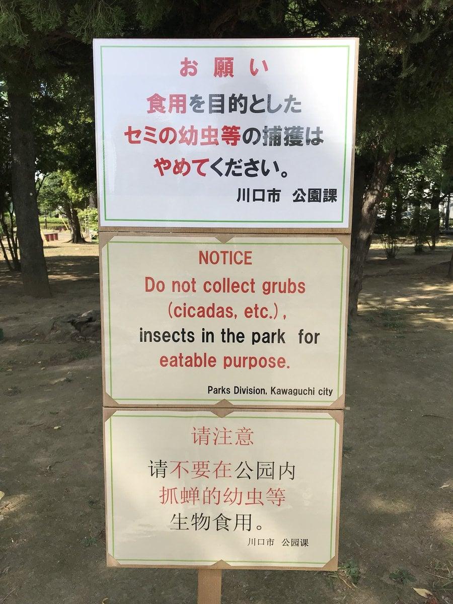 Un letrero en diferentes idiomas en un parque de Kawaguchi.