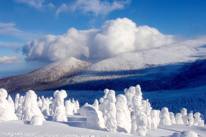 Árboles de hielo de Zaou 蔵王の樹氷
