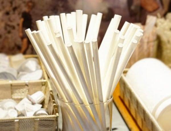 Nippon Paper Industries presentó sus pajillas de papel